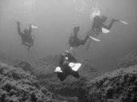 Gruppo di scuba in bianco e nero