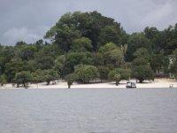 Scoprire l Amazzonia