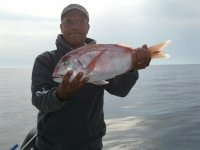 Ricca pesca