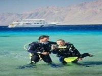 Crociere e corsi diving