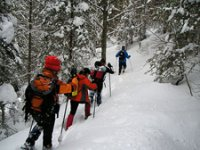 Excursions with snowshoes