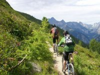 By mountain bike