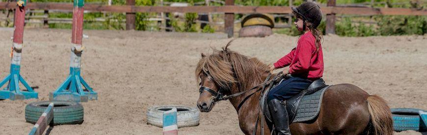 Offerte di Lezioni di Equitazione  Rieti