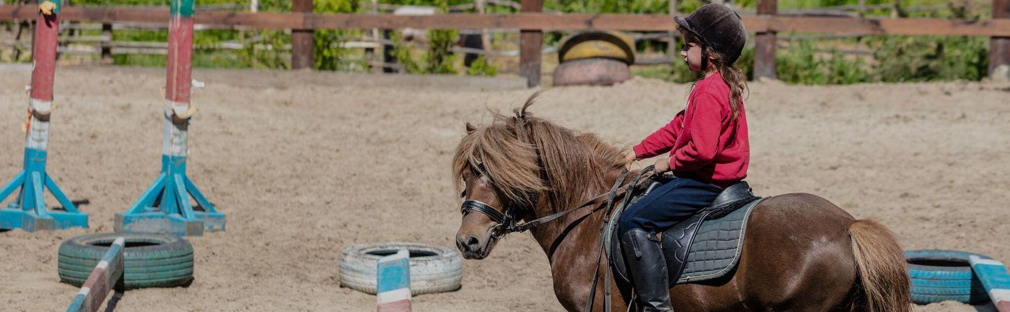 Lezioni di Equitazione a Lucca