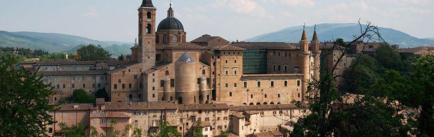 Attività a Urbino