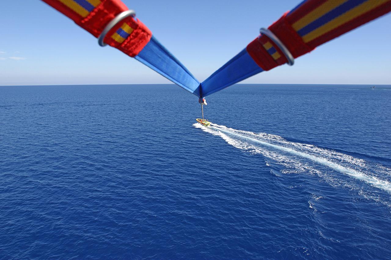 Adrenalina senza sforzo  né vertigini!