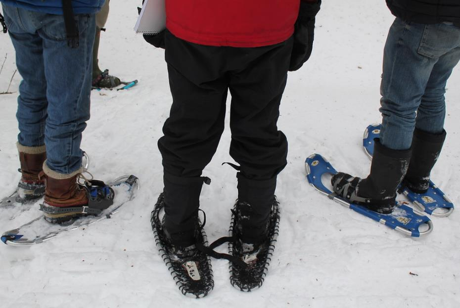 Non c'è bisogno di saper sciare:Un modo originale di festeggiare il Capodanno