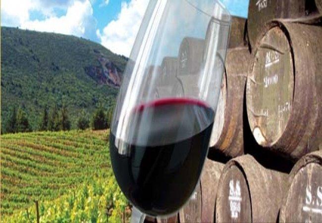 Assaporando il vino